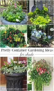 Colorful Shade Container GardenContainer Garden Ideas For Shade
