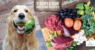 5 easy to make raw dog food recipes