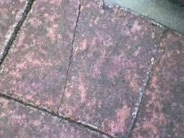 asbestos tiles identification big how to identify asbestos roof tiles vinyl asbestos tile identification asbestos roof