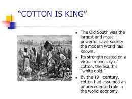 「the mid-19th century, cotton was America's leading export.」の画像検索結果