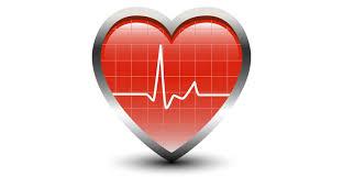 Heart Rate Based Calorie Burn Calculator Shapesense Com