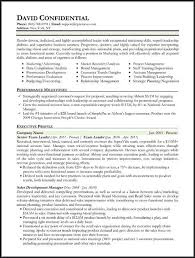 Executive Style Resume Template Hybrid Resume Format Resume Format Types Of Resumes