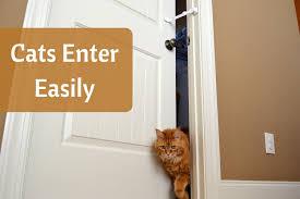 How to dog proof litter box. Door Buddy | Grey Chevron