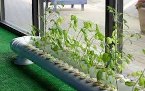 indoor hydroponic gardening. Jason\u0027s Indoor Guide To Organic And Hydroponic Gardens Is A Website That Covers Many Of The Different Systems/set Ups Used For Gardening. Gardening