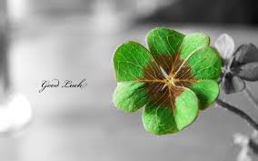 four leaf clover desktop wallpaper.  Four Flowers Text Typography Shamrock Luck Macro Selective Coloring Four Leaf  Clover Clovers  1920x1200 Wallpaper Throughout Four Leaf Clover Desktop A