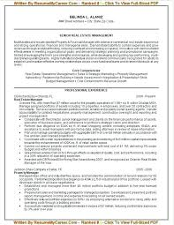 Best Resume Writing Service 40 Federal Resume Example Federal Stunning Online Resume Writing Services