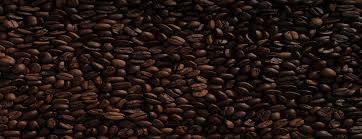 Premium office coffee machine rentals. Coffee Websites And Website Designs That Look Great