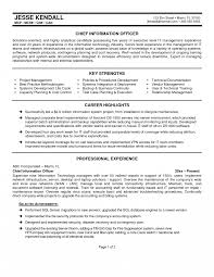 Cio Resume Samples Recoveryicer Resume Examples Awesome Collection Of Sample Cio 2