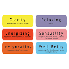 Aromatherapy Scent Chart Aromatherapy Basics Giftset