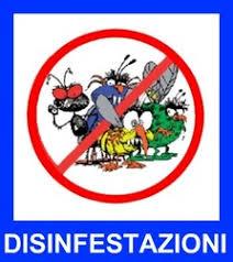 Risultati immagini per disinfestazione