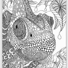 Small Picture Adult Coloring Pages For October Coloring Pages Kids Download