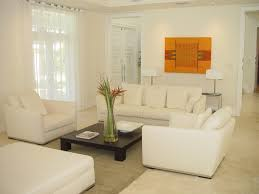 Image Of: All White Living Room Ideas