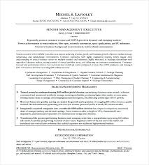 Ceo Resume Example Resume Template Ceo Resume Samples Free – Resume ...
