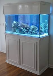 fish tank lighting ideas. XIAO MO GU LED Aquarium Hood Lighting Fish Tank Light For Freshwater And Saltwater,lighting Color White Blue Fit 11\ Ideas :