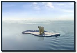 good introduction essay global warming