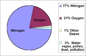 Oxygen Pie Chart