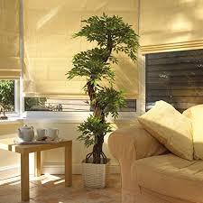 Le piante grasse possono rendere gli ambienti molto più accoglienti: Vert Lifestyle Qualita Grande Lusso Replica Giapponese Fruticosa Albero Interni Falso Pianta Artificiale 165 Cm Di Altezza Perfetta In Veranda Hotel Ristorante