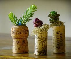 Small Picture Creative Indoor Garden Designs