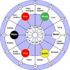 I Like This Circadian Rhythm Chart A Lot Too Chinese