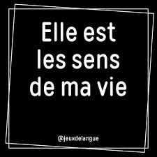 Jeux De Langue On Twitter Elle Est Les Sens De Ma Vie