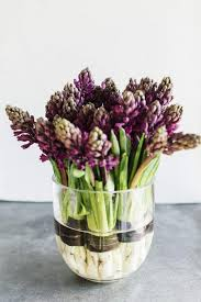 forcing bulbs in glass containers ideas