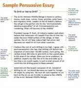 Education essay ideas