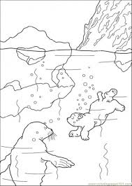 Small Picture Polar Bear Is Swimming Coloring Page Free The Little Polar Bear