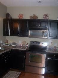 Black Kitchen Cabinets Custom Black Kitchen Cabinets Design Awesome 11211 Kitchen Design