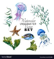 marine set of watercolor tropical fish vector image