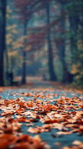 Fall Aesthetic iPhone Wallpapers - Top ...
