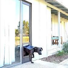 terrific dog door exterior door with built in pet door exterior door with built in terrific dog door