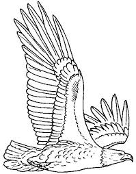 Small Picture Bald Eagle Flying High Coloring Page NetArt