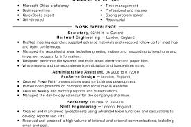 Net Developer Resume Captivating Net Developer Resume Example