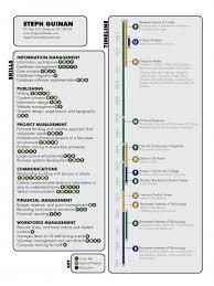 Infographic Resume Infographic
