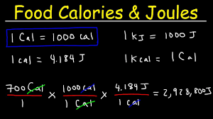 Calorie Conversion Chart Joules Food Calories Kilojoules Unit Conversion With Heat Energy Physics Problems