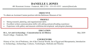 ... 100+ Profile Resume Examples For Customer Sample Placement - profile  statement resume ...