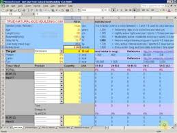 diet excel sheet how to make a diet plan with excel demo video part 1 youtube