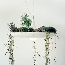 babylon vegetal chandelier pendant lighting pendant lighting chandelier pendant lighting