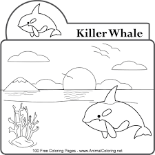 Small Picture Orca Whale Coloring Pages Printable Baby Killer Whale Colouring