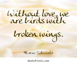 Life Without Love Quotes Quotes about love Without love we are birds with broken wings 49