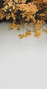 Sunflower Aesthetic Wallpaper Aesthetic In 2019 Aesthetic