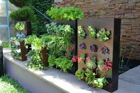vertical walls garden design and