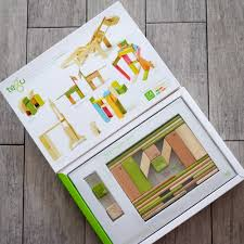 Tegu Designs Mom Finds Tegu Magnetic Blocks