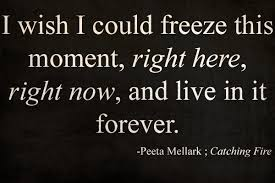 Hunger Game Quotes Delectable Quotes The Hunger Games Fan Art 48 Fanpop