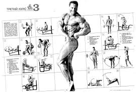 Joe Weider S Bodybuilding System Book And Charts