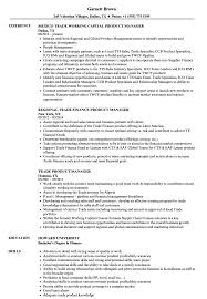 Product Manager Resume Sample Product Manager Resume Examples Examples of Resumes 46