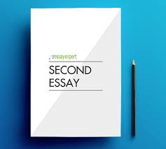 college admissions services the essay expert second essay optional