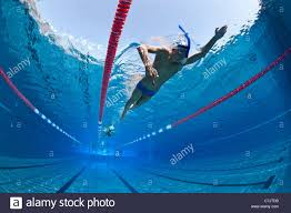 Beautiful Olympic Swimming Pool Underwater Photo Swimmers Training In An Open Air For Design