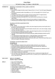 Executive Resume Format Beautiful Sales Accounts Executive Resume