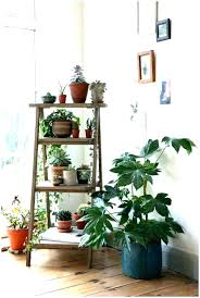 window plant stand indoor shelf enchanting stands bay diy sh indoor window sill plant shelf